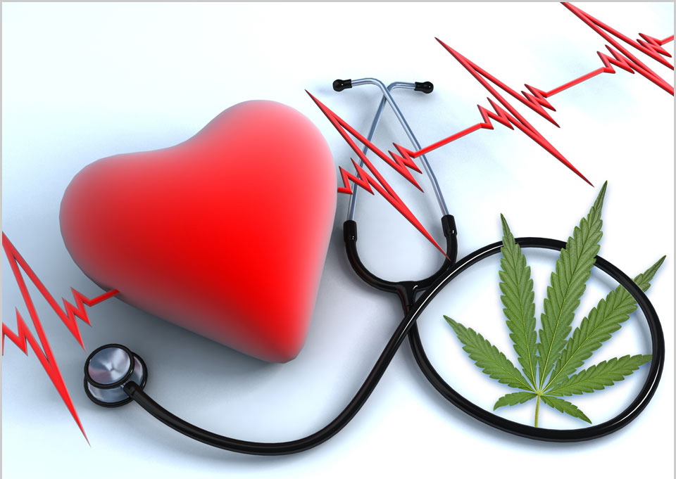 Millions With Heart Disease Use Pot, Risking Harm